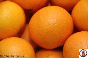 Teddybär Orangen in Innsbruck